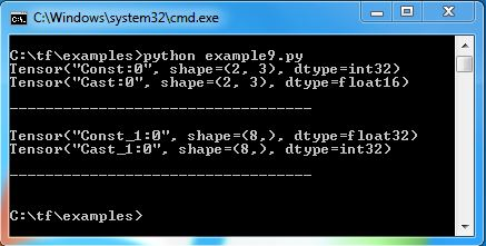 Change data type of tensor